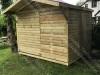 Tanalised Apex Shed 8 x 8